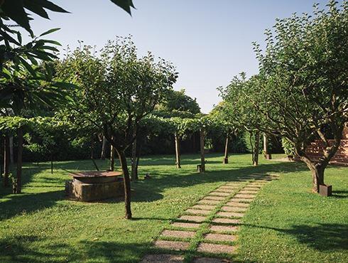 Quinta de sonhos 3